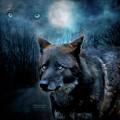 Midnight Spirit by Carol Cavalaris