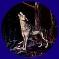 Midnight Wolf by Ruanna Sion Shadd a'Dann'l Yoder