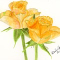 Midsummer Roses by Alexis Grone