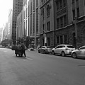 Midtown Sunday Morning by Susan Lafleur
