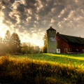 Midwest Morning by Joel Witmeyer