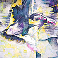Migration 02 by Miki De Goodaboom
