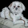 Miki Dog by Ferrel Cordle
