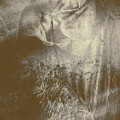 Mildew The Scarecrow by Jorgo Photography - Wall Art Gallery