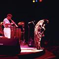 Miles Davis Image 8   by Derek Moore