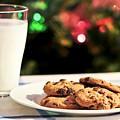 Milk And Cookies For Santa by Elena Elisseeva