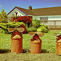 Milk Cans, Tillamook, Oregon