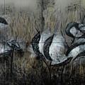 Milkweed by Dick Bourgault