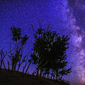 Milky Way And Silhouette Trees At Bruneau Dunes State Park Idaho by Vishwanath Bhat