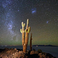 Milky Way Magellanic Clouds And Giant Cactus Incahuasi Island Bolivia by James Brunker
