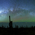 Milky Way Panoramic And Green Airglow by James Brunker