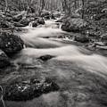 Mill Creek Monochrome by Anthony Zeljeznjak