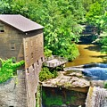 Mill Creek Park Lanterman's Mill And Covered Bridge 2 by Lisa Wooten