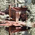 Mill Pond Dreamscape by Stephanie Petter Garrett