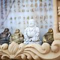 Minature Buddhas by Sophie McAulay