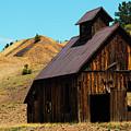 Mine Ruins Of Cripple Creek Colorado by Steve Krull