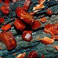Mineral by Bert Mailer