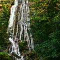 Mingo Falls - Gsmnp by Shari Jardina