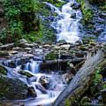Mingo Falls Two by Van Sutherland