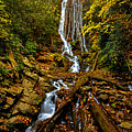 Mingus Falls by Dave Bosse