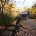 Mingus Mill Fall Color Great Smoky Mountains National Park by Wayman Benton
