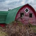 Mini Barn 2018_1_27-4-edit- by Roger Patterson