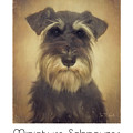 Miniature Schnauzer Poster by Tim Wemple