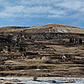 Mining Town Panorama by Angus Hooper Iii