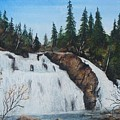 Mink Falls by Theresa Jefferson