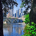 Minneapolis Through The Trees by Tom Reynen