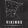 Minnesota Vikings Art - Nfl Football Wall Print by Damon Gray