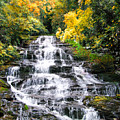 Minnihaha Falls In Autumn by Francesa Miller