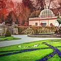 Mirabell Gardens Salzburg  by Carol Japp