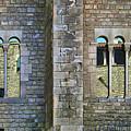 Mirador - Windows by Nikolyn McDonald