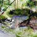 Mirror Pond by Anne Duke