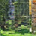 Mirrored Landscape by Renee Longo