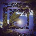 Mirrored Leaf by Josh Tritz