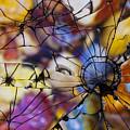 Mirrored Pebbles by Pete Vander Velde