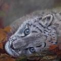 Mirucha In Fall by Ceci Watson