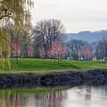 Misato Friendship Blossoms East Lake Winona by Kari Yearous