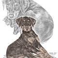 Mischief ... Moi? - Doberman Pinscher Puppy - Color Tinted by Kelli Swan