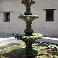 Mission Fountain by Danielle Tayabas