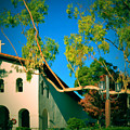 Mission San Luis Obispo by See My  Photos