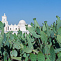 Mission San Xavier Del Bac by Panoramic Images