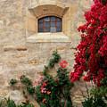 Mission Window by Carol Groenen