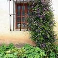 Mission Window With Purple Flowers Vertical by Carol Groenen