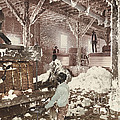 Mississippi Cotton Gin At Dahomey by American 19th Century (detroit Photographic Co.)
