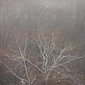 Mist Over The Hudson by Lynda Lehmann