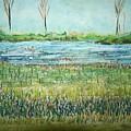 Mistery Pond In Orchard Park Ny by Geraldine Liquidano