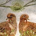 Mistletoe Magic by Angela Davies